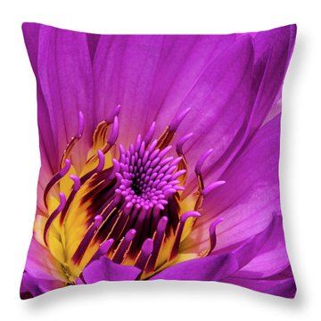 Throw Pillow featuring the photograph Exotic Hot Pink Water Lily Macro by Julie Palencia