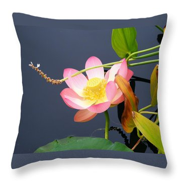 Exotic Waterlily Throw Pillow by Margie Avellino