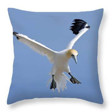 Expanding Surface Throw Pillow by Tony Beck