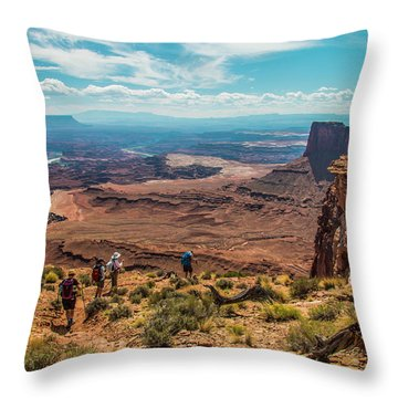 Expansive View Throw Pillow