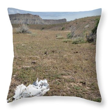 Throw Pillow featuring the photograph Expired by Jenessa Rahn