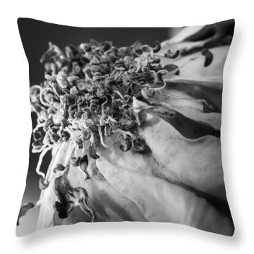 Expired Rose Throw Pillow