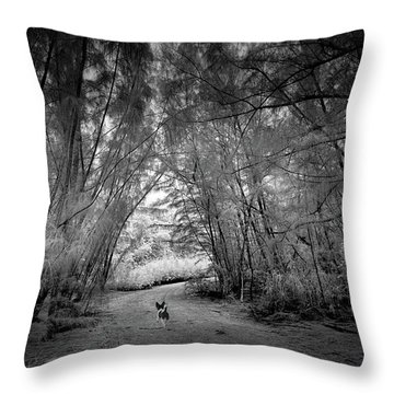 Exploration Throw Pillow