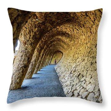 Throw Pillow featuring the photograph Explorer by Randy Scherkenbach