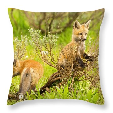 Explorers Throw Pillow by Aaron Whittemore