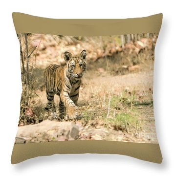 Exploring Throw Pillow