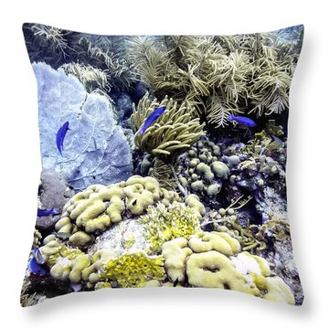 Throw Pillow featuring the photograph Explosion Of Life I by Perla Copernik