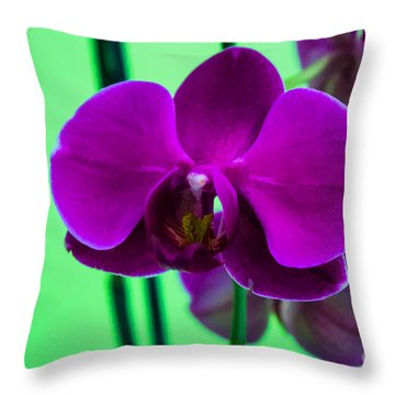 Exposed Orchid Throw Pillow