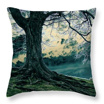 Exposed Roots Throw Pillow by Misha Bean