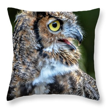 Expressive Throw Pillow by Amy Porter