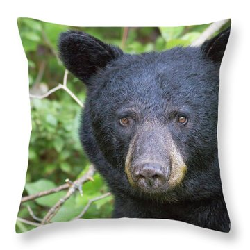 Expressive Eyes Throw Pillow