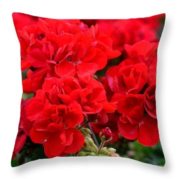 Throw Pillow featuring the painting Expressive Floral Red Geraniums E131716  by Mas Art Studio