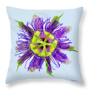 Expressive Yellow Green And Violet Passion Flower 50674b Throw Pillow
