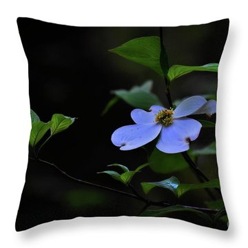 Throw Pillow featuring the photograph Exquisite Light by Skip Willits