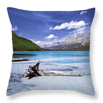 Exterior Decorations Throw Pillow