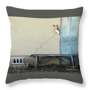Throw Pillow featuring the photograph Exterior Decorator by Joe Jake Pratt