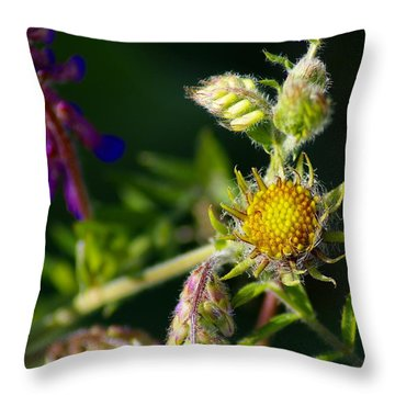 Throw Pillow featuring the photograph Eye Candy From The Garden by Ben Upham III