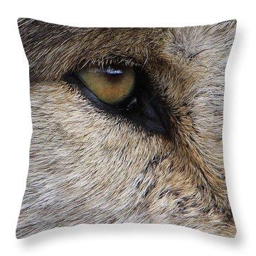 Eye Catcher Throw Pillow