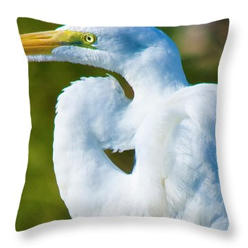 Eye-catching Throw Pillow by Betsy Knapp