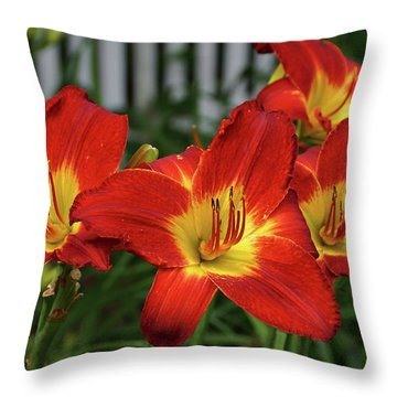 Throw Pillow featuring the photograph Eye Catching by Sandy Keeton