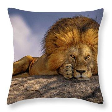 Eye Contact On The Serengeti Throw Pillow