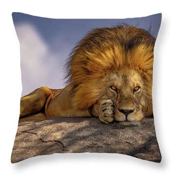 Eye Contact On The Serengeti Throw Pillow