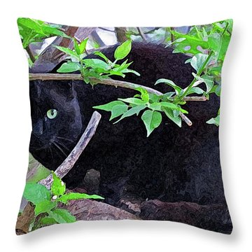 Eye Contact No.2 Throw Pillow by Sandra Church