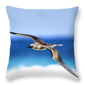 Eye Contact Throw Pillow by Sean Davey
