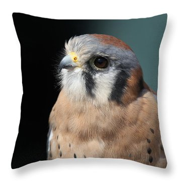 Throw Pillow featuring the photograph Eye Of Focus by Laddie Halupa