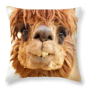 Eye Of The Beholder Throw Pillow by J Jaiam