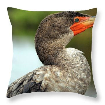 Eye Of The Beholder Throw Pillow