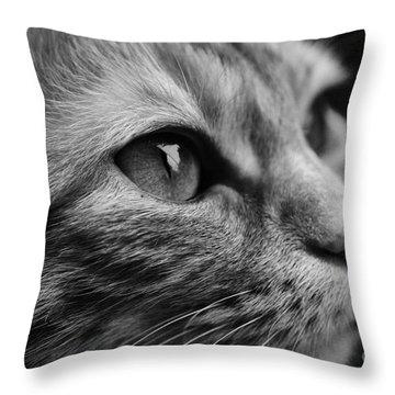 Eye Of The Cat Throw Pillow