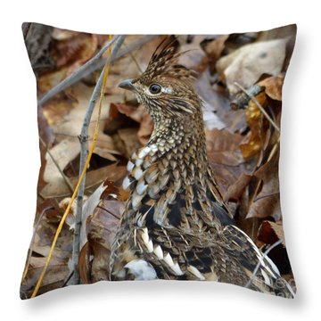 Eye Of The Rugr Throw Pillow by Randy Bodkins