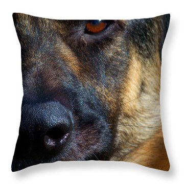 Eye Of The Shepherd Throw Pillow by Jai Johnson