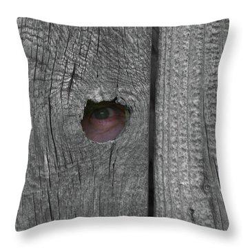 Eye On Life Throw Pillow by Douglas Barnett