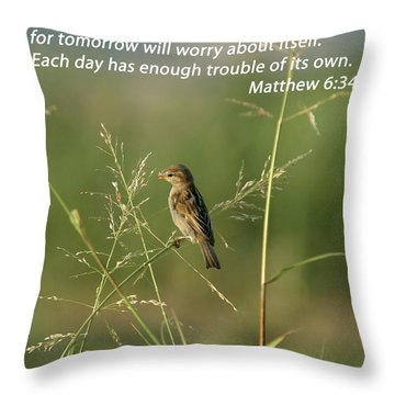 Eye On The Sparrow Throw Pillow by Robert Frederick