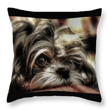 Eye See You... Throw Pillow