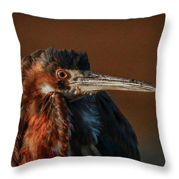 Throw Pillow featuring the photograph Eye To Eye With Heron by Tom Claud