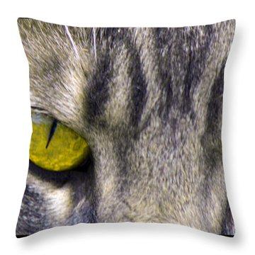 Eyes 1c Throw Pillow