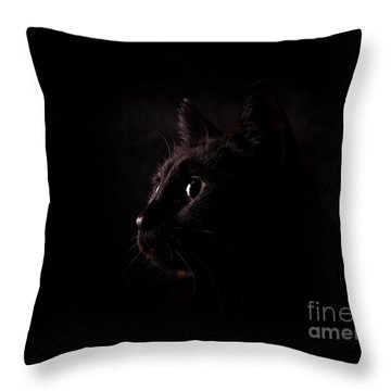 Eyes And Nose Throw Pillow