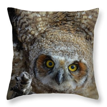 Eyes Into The Soul Throw Pillow
