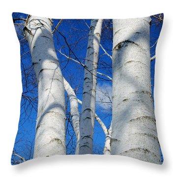 Eyes Of Birch Throw Pillow