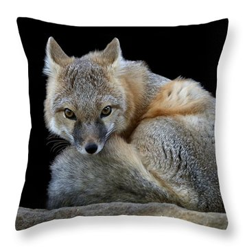 Eyes Of The Fox Throw Pillow