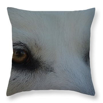 Eyes Of The Wolf - In Her Eyes Throw Pillow by Robyn Stacey