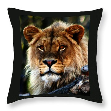 Eyes Of The Young King Throw Pillow by Nick Gustafson