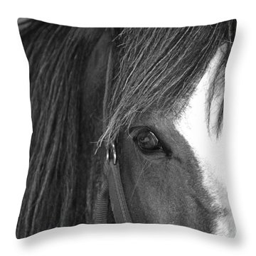 Eyes Throw Pillow by Traci Cottingham