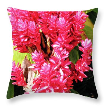 F10 Red Ginger Throw Pillow by Donald k Hall