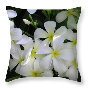 F2 Plumeria Frangipani Flowers Hawaii Throw Pillow by Donald k Hall