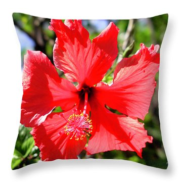 F20 Red Hibiscus Throw Pillow by Donald k Hall