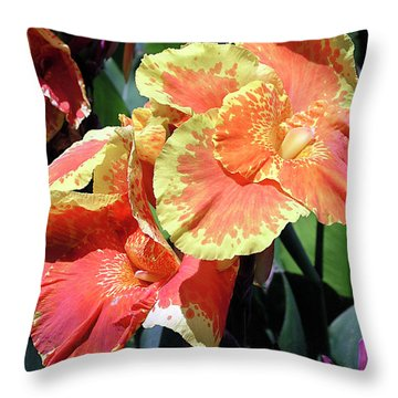 F24 Cannas Flower Throw Pillow by Donald k Hall